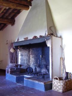 The big original fireplace in the villa