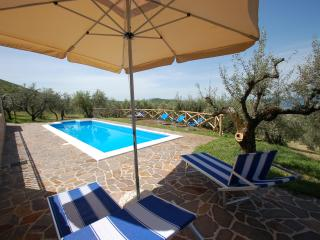 Secluded villa with private pool near Orvieto