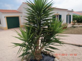 Férias baratas, Algarve, Aljezur