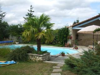 Generous tasteful house with gorgeous views, relaxing large garden & pretty pool, Barbezieux-Saint-Hilaire