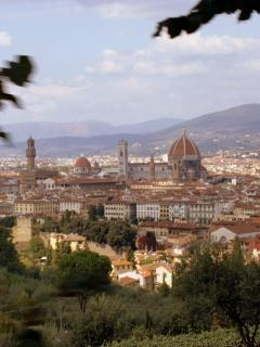 Florence 50 mins drive away