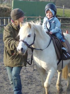 Horse Riding in Llanwrtyd
