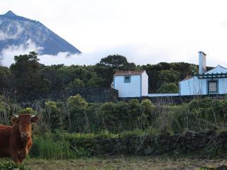 Casa do Paim- Cottage in Pico Island - Azores, São Roque do Pico