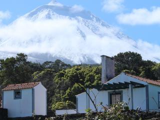 Casa do Paim- Cottage in Pico Island - Azores