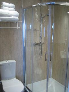 Master en-suite shower room