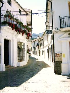 A typical Andalusian scene