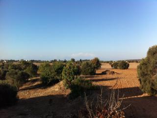 High View Gardens Penthouse, Mazotos, Cyprus