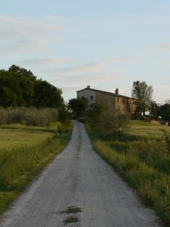 the back road looking up to the house