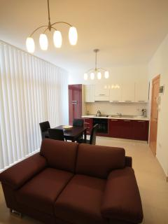 Open plan sitting/dining/fully-equipped kitchen