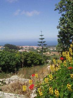 Atlantic coast view above picturesque village of Penedo