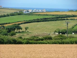 View from the deck across to Treyarnon Bay.