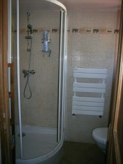 Upstairs en suite shower room