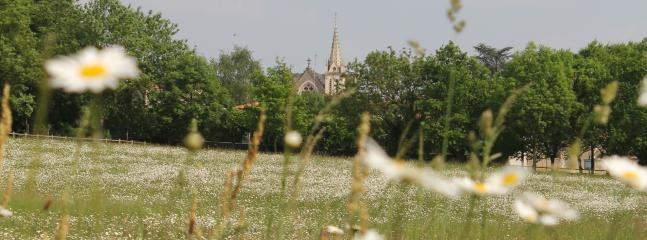 Our village church from the park