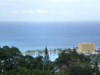 Villa Barbary - Villa with a View!, Ocho Rios