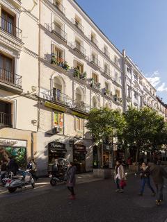 Puerta del Sol - 3 Bedroom/2Bathroom - Madrid Center