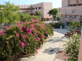 Faro/Algarve(Portugal)-Duplex