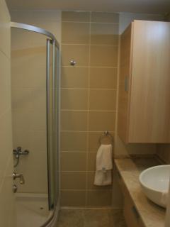 E-1-1 downstairs bathroom