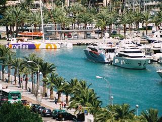 Palma marina from the terrace