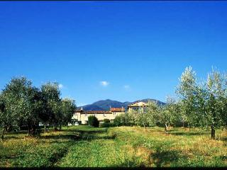 Appartamento in fattoria biologica con splendida vista