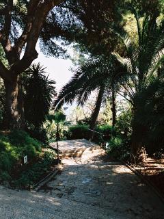 A stroll through the park next door