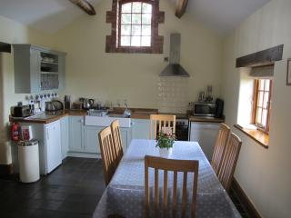 Kitchen-dining area