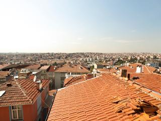 Two-Bedroom 2 Bath Flat w View, Istanbul
