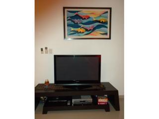 Plasma TV & DVD/VCR player