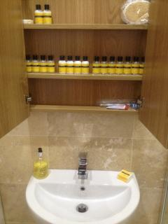 Bathroom Cabinet with little complimentary toiletries