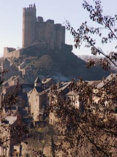 The 13th century castle at Najac 6kms from Pont Jalbert with lots of cafes and crafty shops + walks