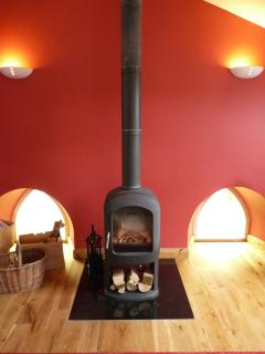 Jotul wood burning stove - very toasty!