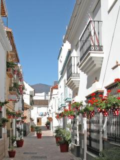 Typical pedestrian street