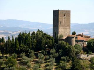 The Tower and the olive grove