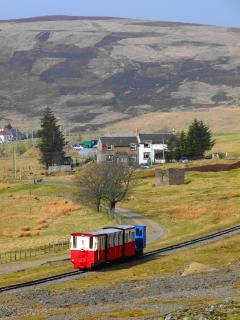 The wee train
