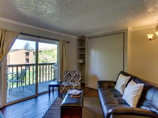 Modern condo w/ full kitchen near downtown & river trail! Cable & free WiFi!