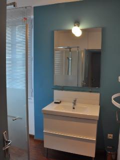 Salle de bain, douche, seche serviettes et séche cheveux