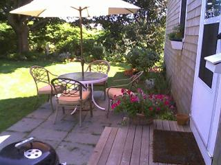 Patio and back yard