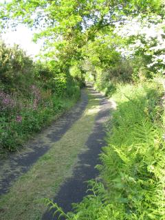 Lovely ountry lanes leading to the Granary