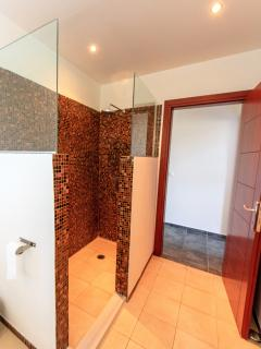 Walk in shower in the main bathroom