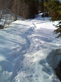 Footpath from chalet to the road (75 m)