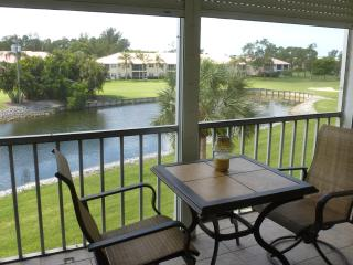 Condo in Turtle Lake in Beautiful Naples Florida