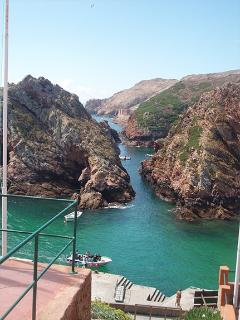 visit Berlenga island, a boat trip it's a fantastic day!!  pick the boat in peniche... a fab day!