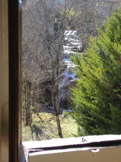 View from 1st bedroom window