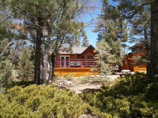 CHALET DEVORA IS NEXT TO BEAR MTN SKI RESORT/ ZOO, Big Bear Region