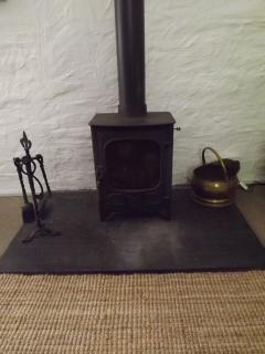 Coedmor Cottage Log Burner