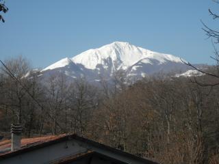 Giarola Valsecchia, Reggio Emilia