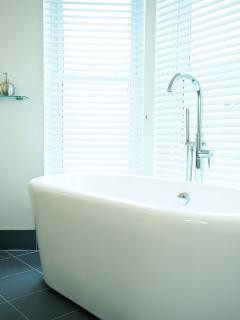 Designer Bath tub in the master bedroom