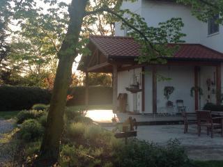 Villa Gina, Treviso