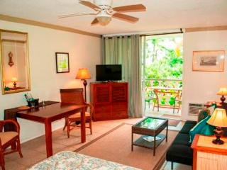 LOCATION, LOCATION, - NO CAR NEEDED - CLOSE TO PIE, Kailua-Kona