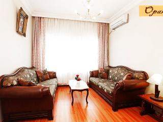 Family Apartment, Safe & Quiet, Istambul