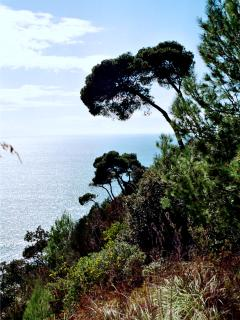 The enchanting Malopasso trail, in the Scauri's part of Ulysses' Riviera Park, 2 km from h